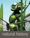 nathistory